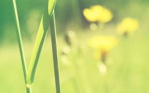 夏季空调省电法&变频空调推荐攻略