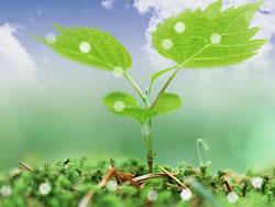 为健康营造舒适的环境 空调安全守则