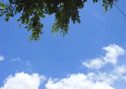 夏季空调霉菌易超标 使用之前需清洗