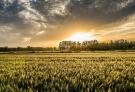 人的一生就像一场孤独旅行,在生命开始的那一刻,是一个人,再到生命结束的那一刻,也是一个人平平淡淡的离去,在这一路有太多的风景,但命运不会让我们为他们而停留,因为我们知道时间老人的列车不会停下,即使沿路的风景再美,也只是值得我们去留做纪念,只属于我们的记忆。