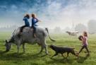 来自荷兰的Adrian Sommeling就是一个名疯狂的摄影师,欣赏他的作品仿佛是在观看一部情节跌宕起伏的电影。儿子是他最好的创作对象,没有什么比孩子更能激发起这位天才的想象。