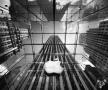 2015年苹果设备全球销量有望达到3.01亿