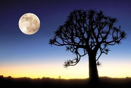 中秋快乐:为什么十五的月亮十六圆?