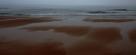 滩涂色块。