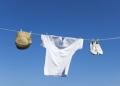 威力洗衣机 洁净不伤衣
