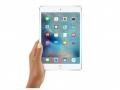 iPad销量下滑:或许要怪iPad mini失宠