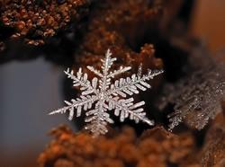 小雪节气天愈寒 长虹Q5KS空调感恩节送温暖