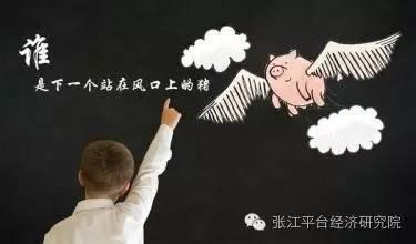本质重于形式:小米和王老吉咋呢? - 王朝雄 - 王朝雄