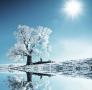 双11狂欢献礼 海尔空调给您一个健康的冬天