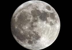 """超级月亮般极致  美菱""""超级冰箱""""美好上线"""