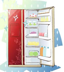 使用冰箱有规范 安置食材的四大准则您不可不知
