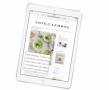 苹果发布全新iPad:支持Apple Pencil