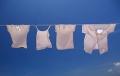 干衣机和洗烘一体机怎么选 TCL洗衣机告诉你