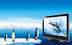 除了美食,春节接待亲朋还需要一台好电视