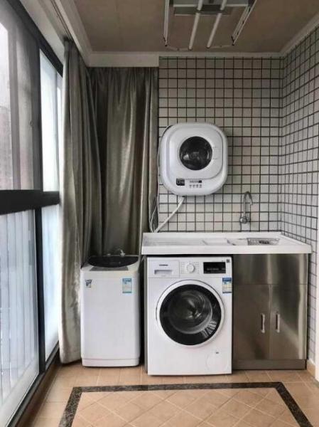 单身狗的经济崛起:壁挂式洗衣机市场渐露锋芒