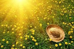 全球高温热浪现象频发 一款好空调助你安然渡夏