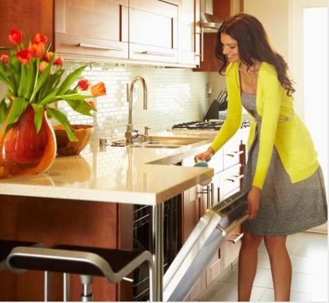 主笔水槽洗碗机团体标准 方太创新造就行业领先