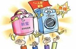 """迷你电饭煲、小型洗衣机 """"一人份""""家电成新宠"""