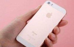 传苹果已开始备货iPhone SE2 最快明年初发售
