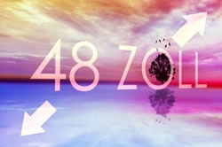 LG将上市12款OLED新品 最贵29999美元