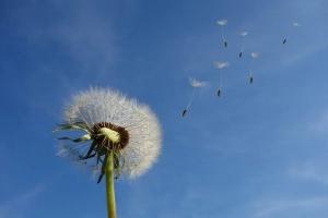 告别空调病让徐徐清风 带给你大自然般的清凉